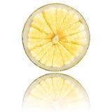 Grapefruit slice isolated on white background back lighted Royalty Free Stock Images