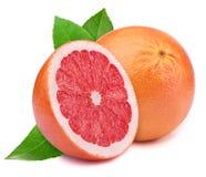 Grapefruit with slice isolated on white Stock Image