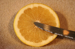 Grapefruit slice and knife Stock Image