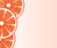Grapefruit slices Stock Images