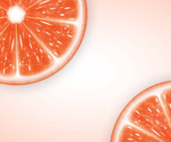 Grapefruit slices Stock Image