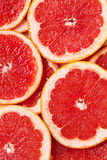 Grapefruit slices Stock Image
