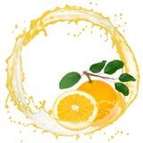 Grapefruit splash Stock Photo