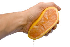 Grapefruit squeezing Stock Images