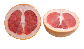 Grapefruit two halves Stock Image