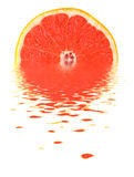 Grapefruit on Water. Fresh grapefruit on water. Isolated Stock Photos