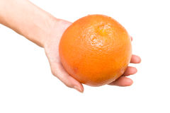 Grapefruit in woman hand Royalty Free Stock Photo