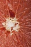 Grapefruitowa braja zdjęcie royalty free