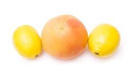 grapefruitowa cytryna obraz royalty free