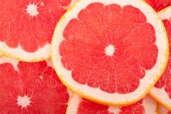 grapefruitowa czerwień fotografia royalty free