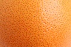 grapefruitowa łupa Zdjęcie Stock
