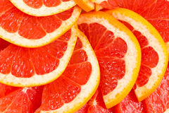 Grapefruitowy Obraz Royalty Free