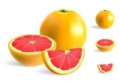 grapefruitowy ilustracji