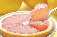 Grapefruitowy kąsek Obraz Stock