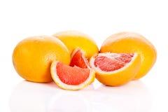 Grapefruitowy odosobniony na białych tło owoc karmowych Fotografia Stock