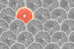 Grapefruitowy plasterek Stoi Out Od tłumu Obrazy Royalty Free