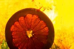 Grapefruitowy plasterek w wodzie zdjęcie stock