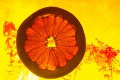 Grapefruitowy plasterek w wodzie obraz stock