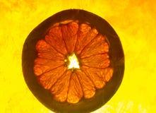 Grapefruitowy plasterek w wodzie zdjęcia royalty free