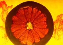 Grapefruitowy plasterek w wodzie Obrazy Royalty Free