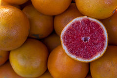 Grapefruitowy tło Obrazy Stock