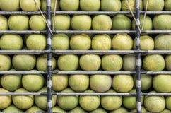 Grapefruitowy w ciężarówce W piórze Fotografia Royalty Free