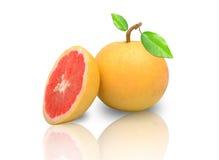 Grapefruitowy z odbiciem odizolowywającym na bielu Zdjęcie Royalty Free