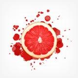 Grapefruitowy z pluśnięciem royalty ilustracja