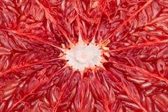 Grapefruitowy zbliżenie Zdjęcie Royalty Free