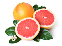 Grapefruits. Whole grapefruit and halves with leaves and flower. Isolated over white background Stock Images