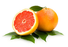 Grapefruits. Grapefruit with a half isolated Royalty Free Stock Photography