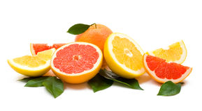 Grapefruits Royalty Free Stock Photography