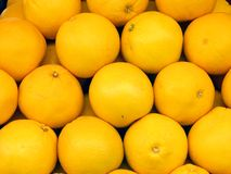 Grapefruits. At stall royalty free stock images