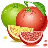 Grapefruits Royalty Free Stock Images