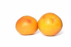 grapefruits obrazy royalty free