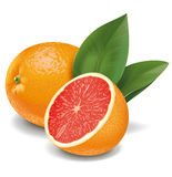 grapefruits Fotos de Stock Royalty Free