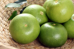 Grapefruits. Green and fresh grapefruits - food and drink Royalty Free Stock Photography