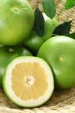 grapefruits Obrazy Stock