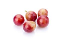 grapefruits zdjęcie stock