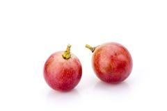 grapefruits zdjęcia royalty free