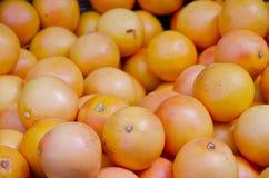 Grapefruits Stock Photo