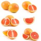Grapefruits collection Royalty Free Stock Photos