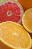 Grapefruits en sinaasappelen Stock Afbeeldingen