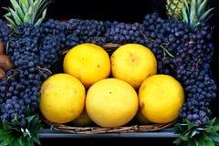 Grapefruits. Grapefruit and black grapes at the market place Royalty Free Stock Image