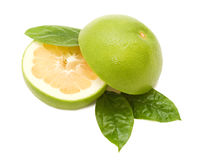 Grapefruits with green leafs Stock Images