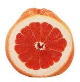 Grapefruits isolated on white. Fresh grapefruits isolated on a white background royalty free stock image