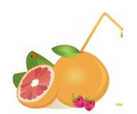 Grapefruits juice Royalty Free Stock Photos