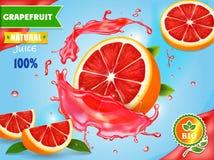 Grapefruits juice advertising. Realistic citrus fruit fresh ad. royalty free illustration
