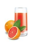 Grapefruits juice Stock Image