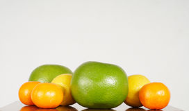 Grapefruits, lemons and mandarines Stock Photography